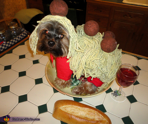 Spaghetti and Meatballs Dog Costume