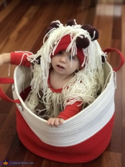 Spaghetti and Meatballs Homemade Costume