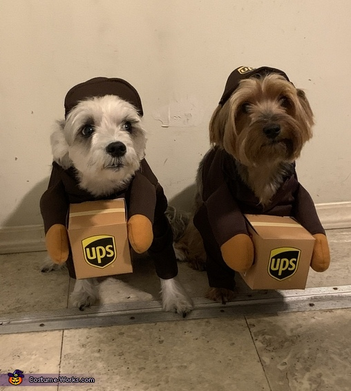 Special Delivery Costume