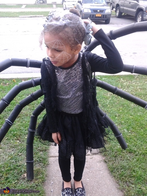 Spider Homemade Costume