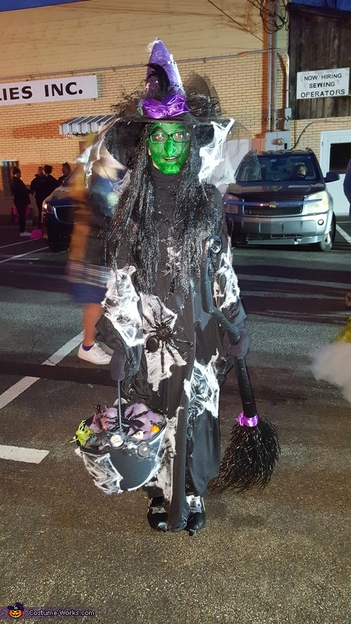 Spider Witch Homemade Costume