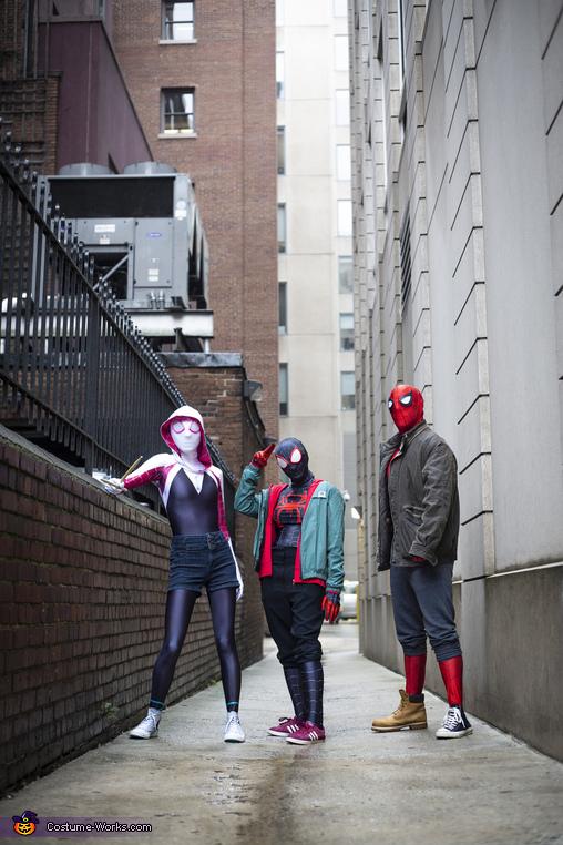 Spidey Dream Team Homemade Costume