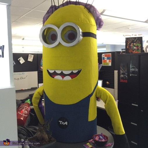 Split-Personality Minion Costume