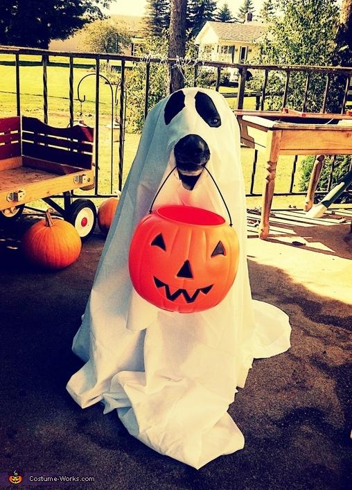 Spookie Buddy Costume
