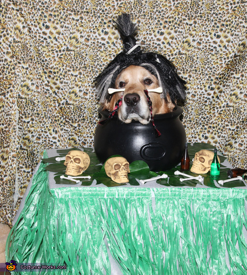 Phoenix the Shrunken Head, Spooky Witch Doctor and Shrunken Head Illusion Costumes