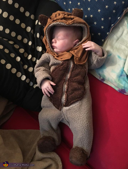 Baby wookie, Star Wars Costume