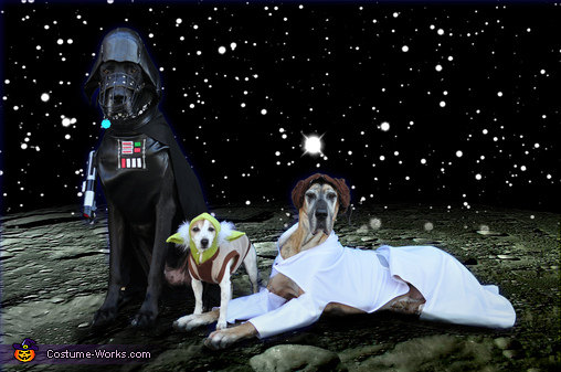 Star Wars: The Canines Strike Back, Star Wars: The Canines Strike Back Costume