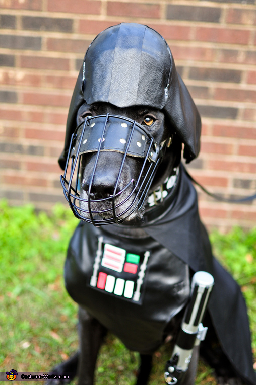 Darth Vader Diego, Star Wars: The Canines Strike Back Costume