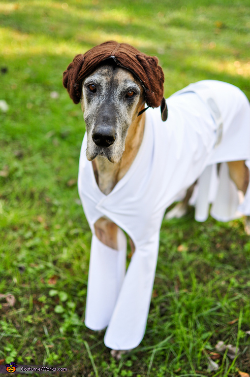 Princess Leia Nova, Star Wars: The Canines Strike Back Costume