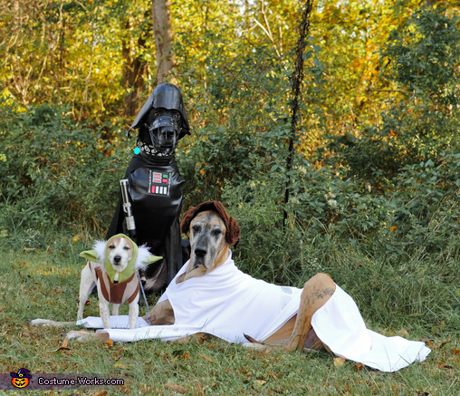 Just another group shot, Star Wars: The Canines Strike Back Costume