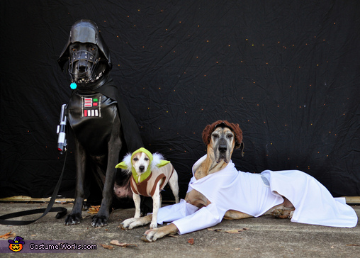 Star Wars: The Canines Strike Back Costume