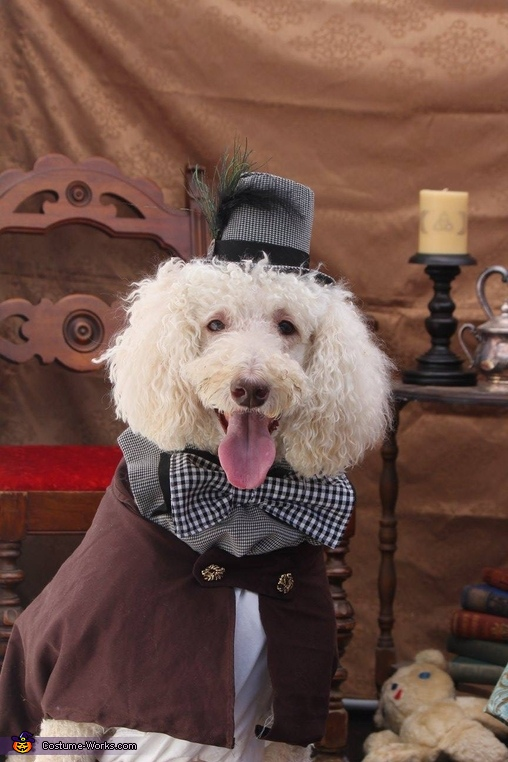 Steampunk Your Pet Costume
