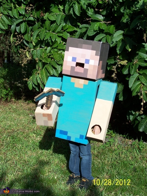 Font view, Steve from Minecraft Costume