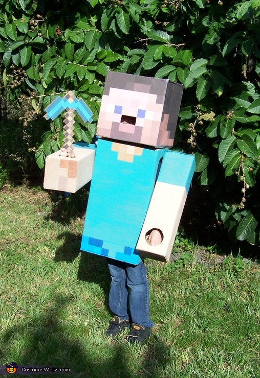 Steve from Minecraft - Homemade costumes for boys