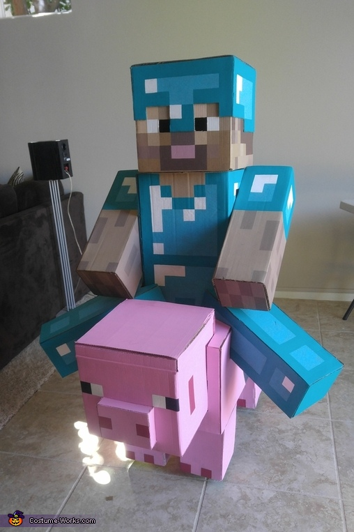 Steve Riding A Pig Costume