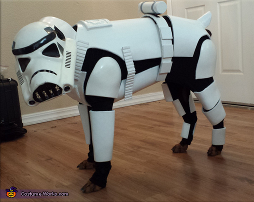 Penny Bark-Bark as Stormtrooper Dog, Stormtrooper Dog Costume