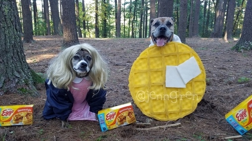 Stranger Dogs Costume