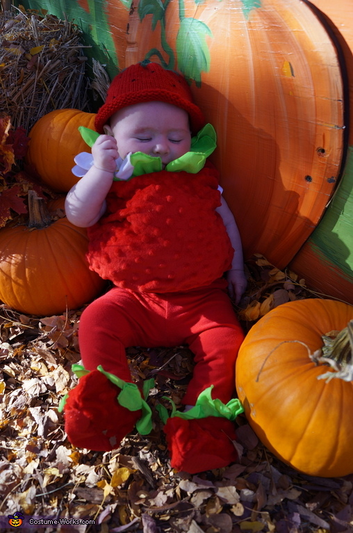 Sleepy Strawberry Alexis, Strawberry Baby Costume
