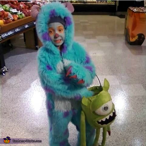Monsters Inc. Sulley Costume