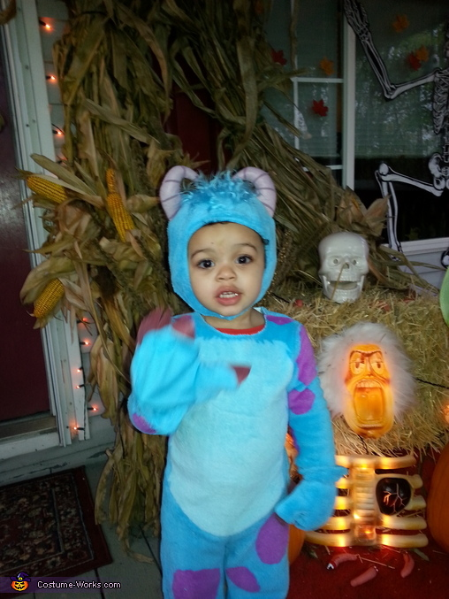 sulley from monsters inc costume - Monsters Inc Baby Halloween Costumes