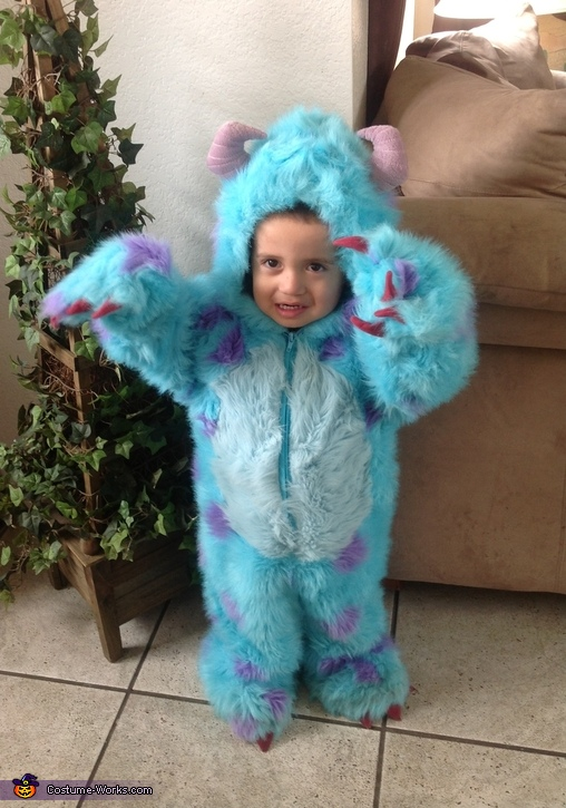 Sulley Monsters Inc Halloween Costume