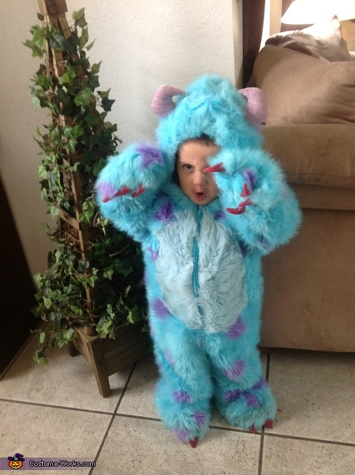 Sulley Monsters Inc Costume