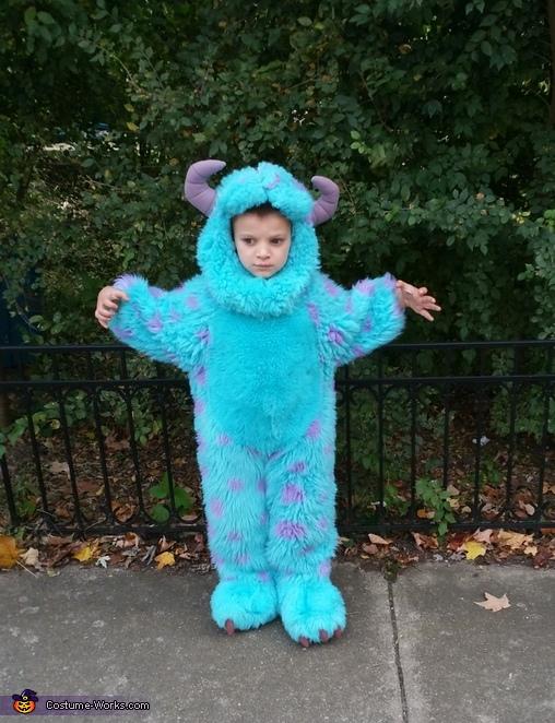 Sullivan from Monster Inc Costume