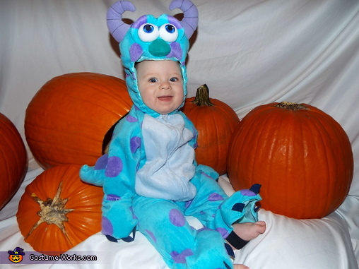 sully from monsters inc baby costume - Monsters Inc Baby Halloween Costumes