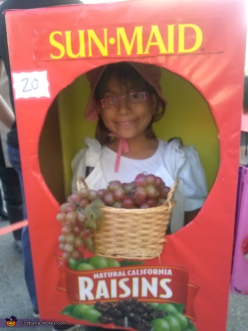 Sun Maid Raisin Box Costume