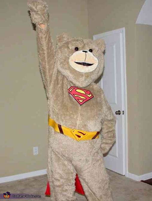 Super-Ted Costume