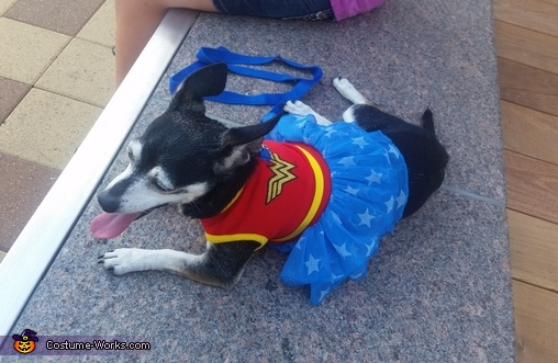 Wonder woman , Super Heros Costumes