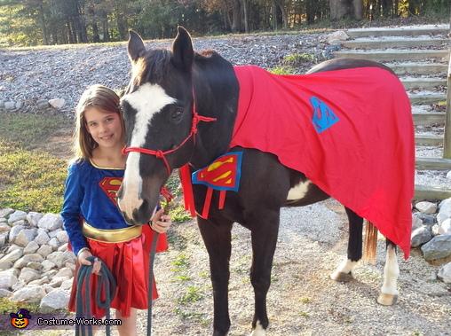 Super Horse Costume