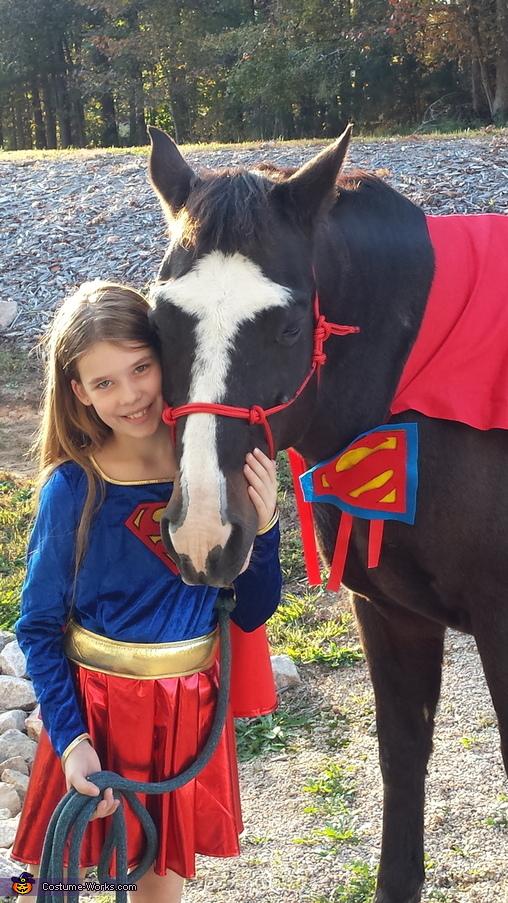 Super Horse Homemade Costume