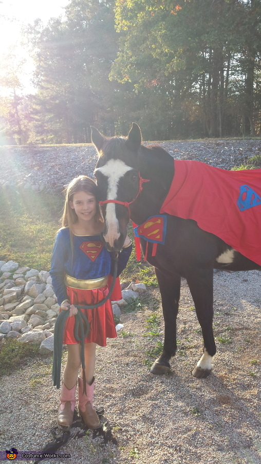 Super Horse Homemade Costume