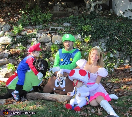 Super Mario Brothers Family Costume