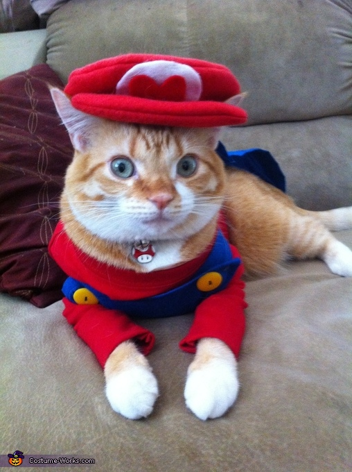 Super Mario Cat Costume