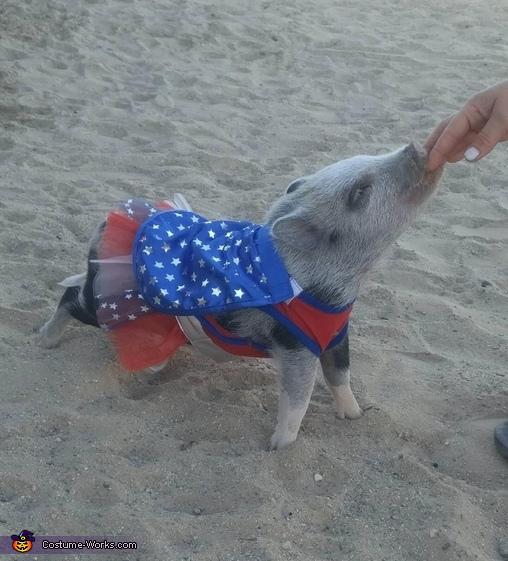 Piper the Super Pig Costume