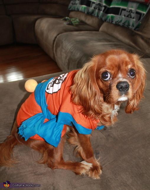 Super Saiyan Goku Costume