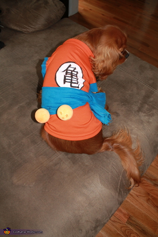 Super Saiyan Goku Dog Homemade Costume