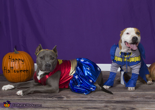 Wonder Woman & Batman , Superdog Heroes Costume