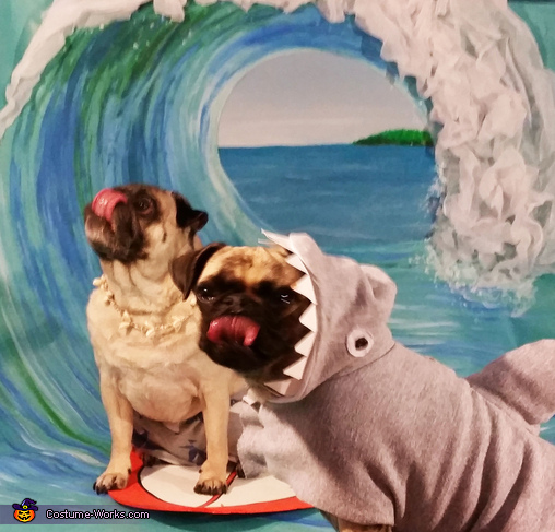 Pug and Shark:  The Dynamic Duo, Surfer Pugs Costume