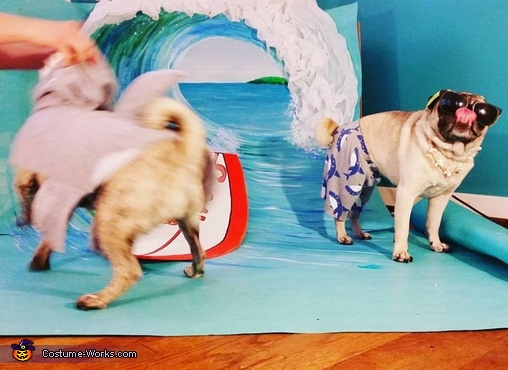 #TheStruggleIsReal, Surfer Pugs Costume