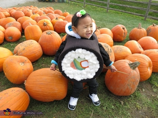 Sushi Baby Homemade Costume