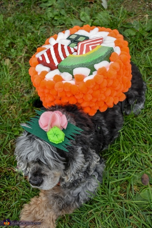 Sushi Roll Dogs Costume