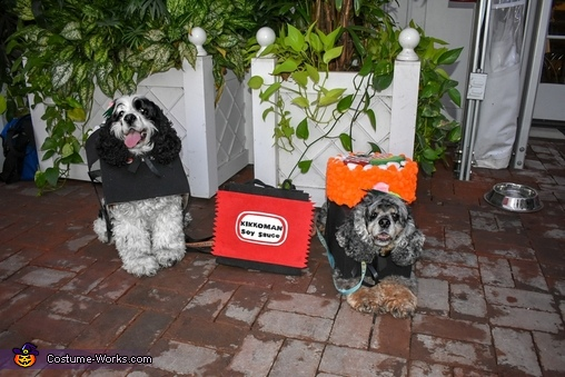 Soy into Halloween and ready to roll, Sushi Roll Dogs Costume
