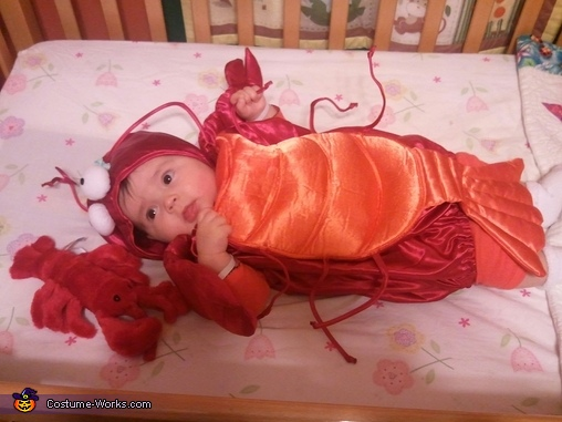 Sweet Little Lobster Costume