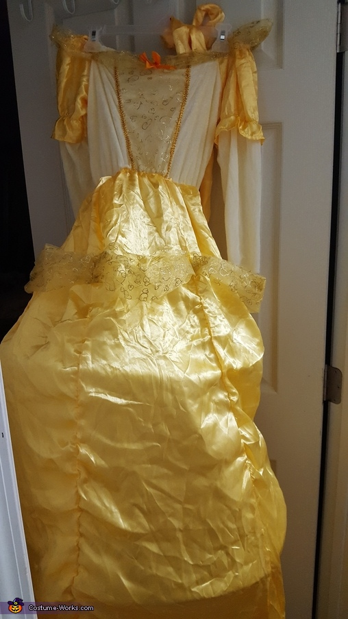 Dress before, Taco Belle Costume