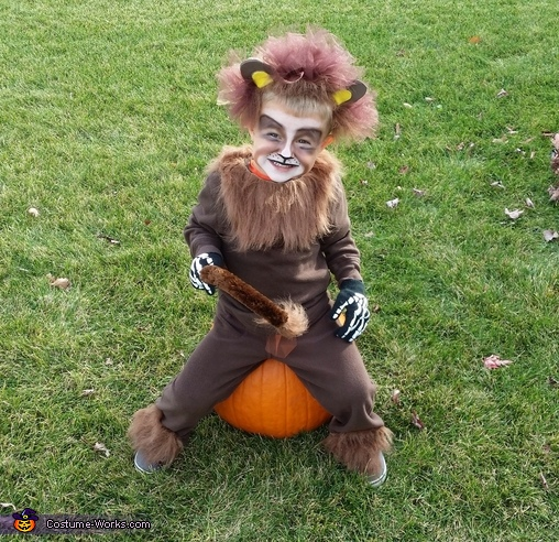 Tame Lion, Tame Lion Costume
