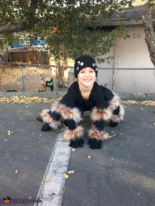 Tarantula Homemade Costume