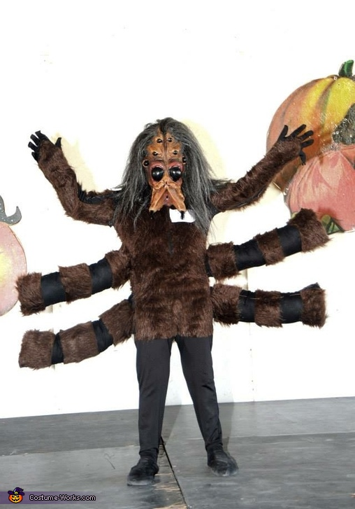 Tarantula Boy Costume